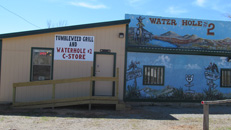 Tumbleweeds Grill and Water Hole #2